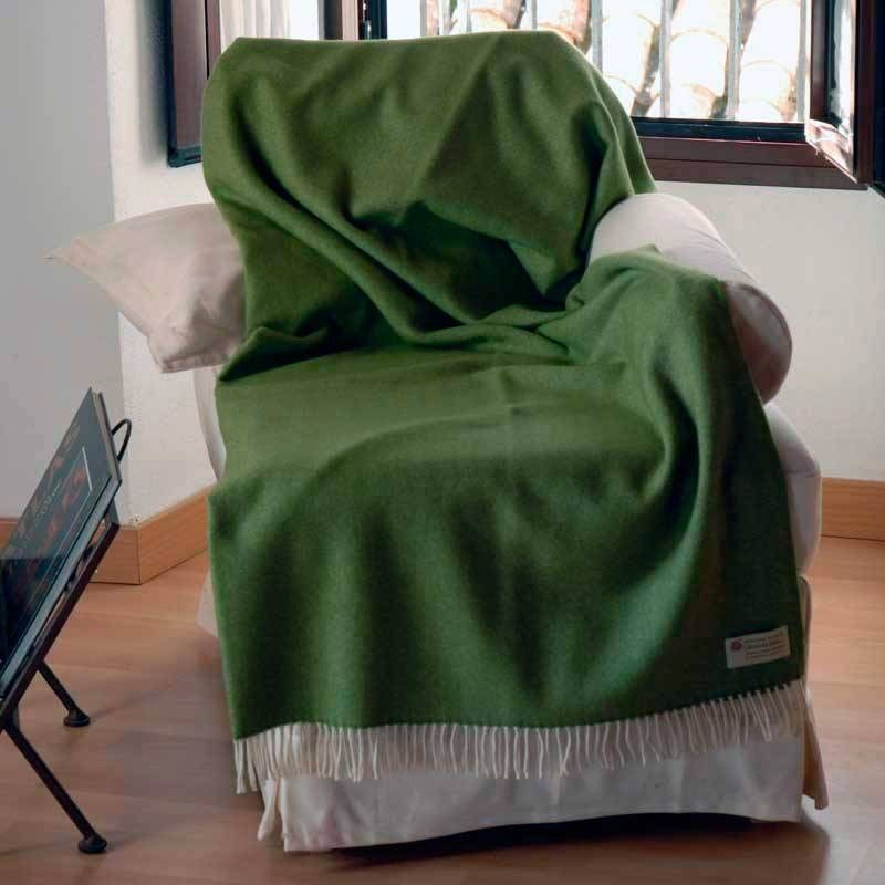 Green Sofa Plaid