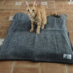 Navyblue Wool Plaid Dog Cat